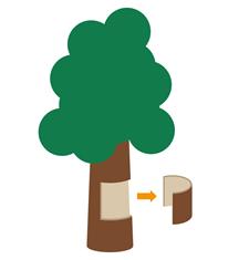 コルクは木の樹皮を加工した天然素材